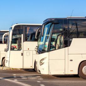 Cartes-transports-scolaire_Site-actualité